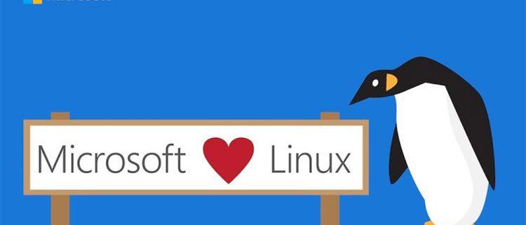 ویندوز و لینوکس